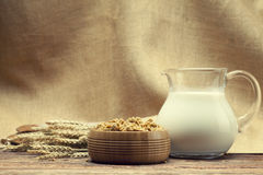 Cereali destinati all'alimentazione sani Immagine Stock