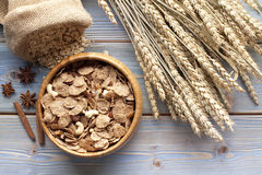 Cereali destinati all'alimentazione sani Fotografia Stock Libera da Diritti