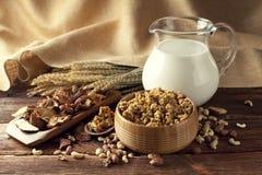 Cereali destinati all'alimentazione sani con i frutti ed i dadi Fotografie Stock