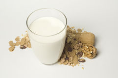 Cereali e latte Fotografia Stock Libera da Diritti