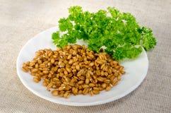 Cereali germinati e prezzemolo Immagini Stock