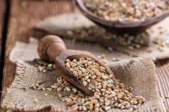 Cereali (grano, segale, orzo, avena e miglio) Fotografia Stock Libera da Diritti