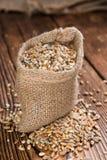 Cereali (grano, segale, orzo, avena e miglio) Fotografie Stock Libere da Diritti