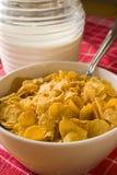 Cereali nuovo 1 Fotografie Stock Libere da Diritti