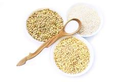 Cereali riso, lenticchia, grano e cucchiaio di legno con sale, orizzontale Fotografia Stock Libera da Diritti