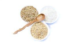 Cereali riso, lenticchia, grano e cucchiaio vuoto di legno Immagini Stock Libere da Diritti