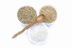 Cereali riso, lenticchia, grano e orizzontale vuoto di legno del cucchiaio Fotografia Stock Libera da Diritti