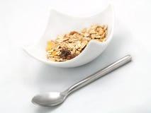 Cereali in una ciotola bianca Immagini Stock Libere da Diritti