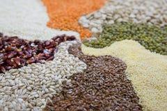 Cereali variopinti differenti Immagine Stock Libera da Diritti