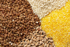 Cereals. Four sorts of cereals on the black plate macro shot background Royalty Free Stock Photos