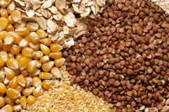 Cereals. Four sorts of cereals on the black plate macro shot background royalty free stock photo