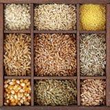 Cereals Stock Photos