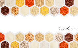 Cereals. Hexagons with different varieties of cereals Royalty Free Stock Image