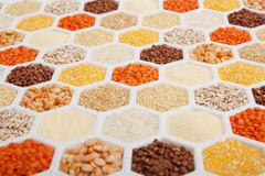 Cereals. Hexagons with different varieties of cereals Stock Image