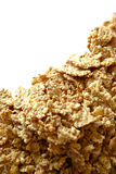 Cereals. Image of cereals with strong light stock photos