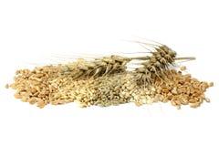 Cereals Stock Photo