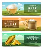 Cereals Banner Set Royalty Free Stock Image