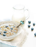 Cereals with berries Royalty Free Stock Image