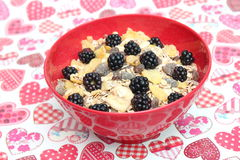 Cereals with blackberries. Some cereals with blackberries and chocolate Stock Image