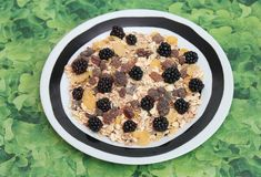 Cereals with blackberries. Some cereals with blackberries and chocolate Royalty Free Stock Photos