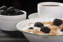 Cereals with blackberry Stock Photos
