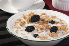 Cereals with blackberry Stock Images