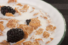 Cereals with blackberry Royalty Free Stock Image