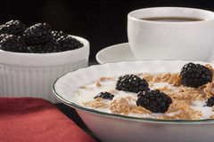 Cereals with blackberry Royalty Free Stock Photography
