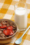 Cereals bowl Stock Photo