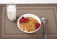 Cereals in bowl with berries and milk Royalty Free Stock Photos