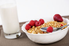 Cereals in bowl with berries near milk Royalty Free Stock Photos