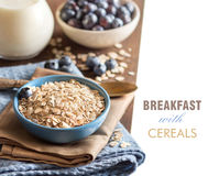 Cereals in a bowl. Milk, blueberries - Healthy breakfast Royalty Free Stock Photos