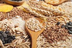 Cereals collection Royalty Free Stock Image