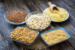 Cereals collection Stock Photography