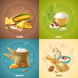 Cereals Design Concept Royalty Free Stock Photography