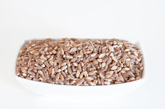 Cereals Royalty Free Stock Photo