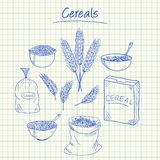 Cereals doodles - squared paper Stock Photo