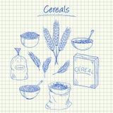 Cereals doodles - squared paper. Illustration of cereals ink doodles on squared paper Stock Photo