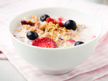 Cereals with flakes and berries Stock Images