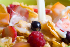 Сereals with fresh berry fruits Stock Photography