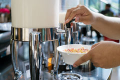 Cereals and fresh maik on the table in buffet breakfast in the r Royalty Free Stock Image