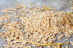 Cereals and grains are scattered on the table Stock Image