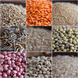 Cereals and legumes composition Stock Image