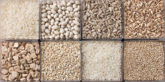 Cereals and legumes. Eight white cereals and legumes Stock Photography