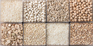 Cereals and legumes. Eight white cereals and legumes Royalty Free Stock Photos