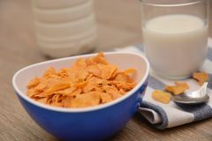 Cereals and milk food for breakfast in morning royalty free stock photography