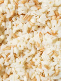 Cereals mix Stock Images