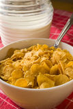 Cereals new 1. Close up of ready to use musli Royalty Free Stock Photos