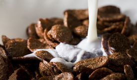 Cereals with pouring milk Royalty Free Stock Images