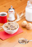 Cereals spoon Royalty Free Stock Image